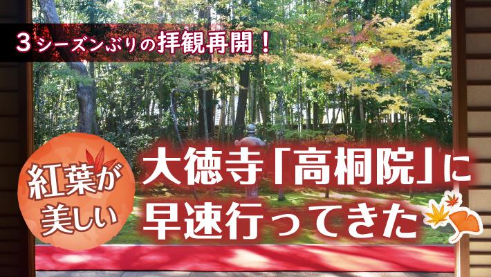 3シーズンぶりの拝観再開!紅葉が美しい大徳寺「高桐院」に早速行ってきた