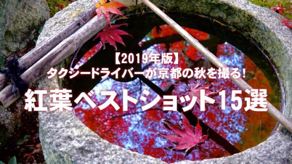 タクシードライバーが京都の秋を撮る!紅葉ベストショット15選