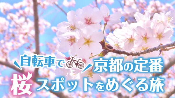 春の京都はサイクリングで!定番の桜スポットをめぐる自転車旅におすすめのモデルコース