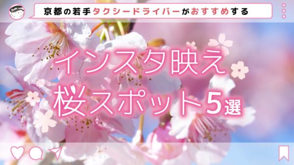 京都の若手タクシードライバーがおすすめするインスタ映え桜スポット5選