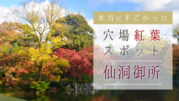 京都のど真ん中にある穴場紅葉スポット「京都仙洞御所」は本当にすごかった