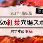 【2021年最新版】混雑しない京都の紅葉穴場スポットおすすめ40選