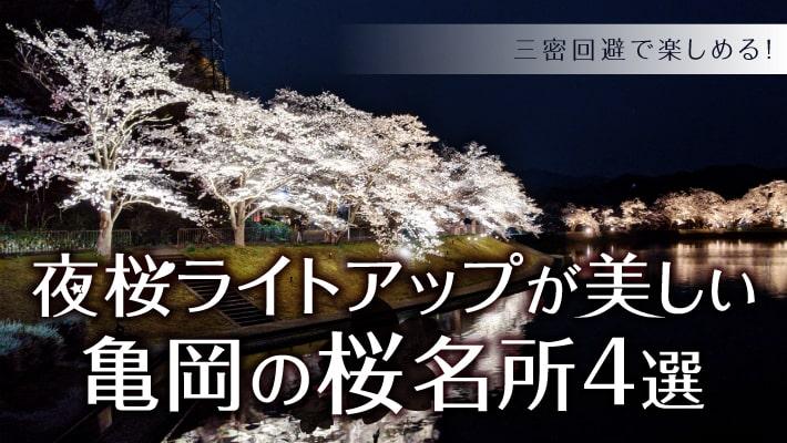 七谷川や平の沢池も!夜桜ライトアップが美しい亀岡の桜名所4選