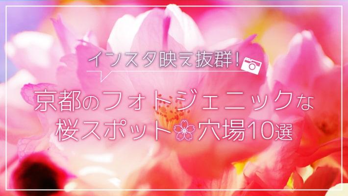 インスタ映え抜群!京都のフォトジェニックな桜スポット穴場10選