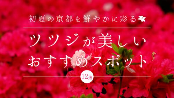 初夏の京都を鮮やかに彩るツツジが美しいおすすめスポット12選