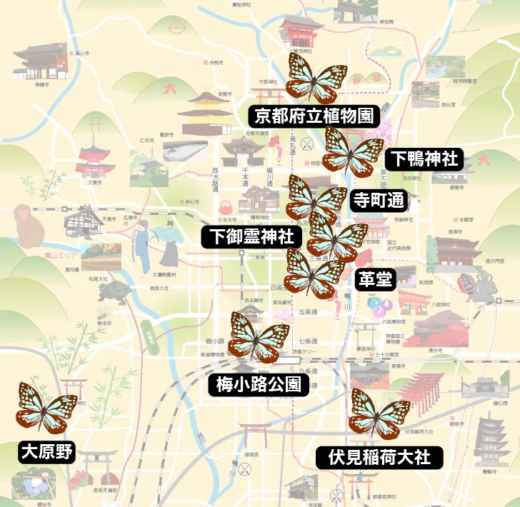 京都の藤袴(フジバカマ)おすすめスポット8選