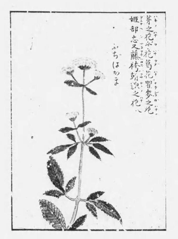鹿持雅澄 1929年刊行 国立国会図書館デジタルコレクションより